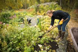 Here's how to make good gardening use of this warm fall weather
