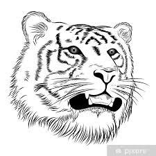 Nálepka Vector Tygr Zastoupeny Ve Formě Tetování Pixerstick