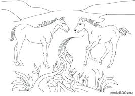 Horse Coloring Pages For Adults Also Animal Coloring Pages For Frame