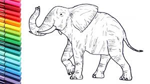 Drawing And Coloring A Elephant Wild Animals Color Pages For