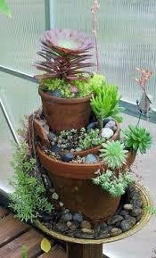 Succulent Garden Designs Pinterest Gardens Vertical Succulent And Succulent Container Garden Plans