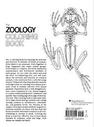 the zoology colouring book college outline s amazon co uk l m elson cinthea vadala jacquelyn giuffre 9780064603010 books