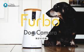 Furbo Dog Camera Review Black Friday Discount Code Blog