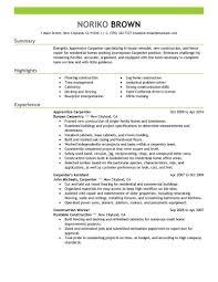Construction Worker Resume Sample Monster Com Standard Resume Format
