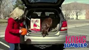 <b>Игрушка KONG Jumbler</b> для собак - YouTube
