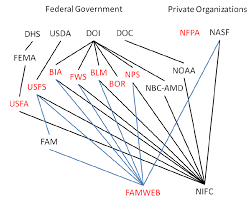 Nbc Org Chart 1 Organizational Chart Of Entities Collecting And Or