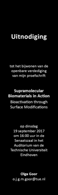 Supramolecular Biomaterials In Action