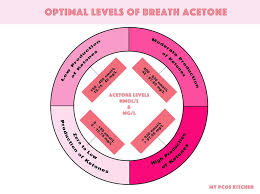 Optimal Ketosis Chart A Ketogenic Diet For Beginners The Ultimate Guide To A Low