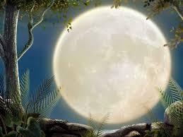 Enciéndeme la luna (poema) Images?q=tbn:ANd9GcRFj4XuyGBad3XDtEvFc73JTEAO2MU1NbiwUkaWH42MA5vkvYt_