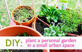 personal garden in a small urban space