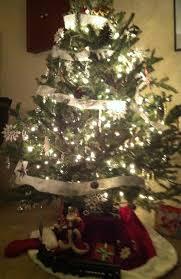 And here's my 2012 fresh, farm-grown Christmas Tree!