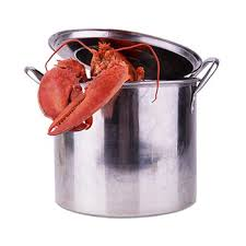 Learn How To Cook Live Lobsters At Home Maine Lobster Now