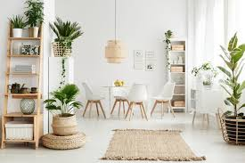 how to decorate indoor plants at home