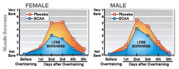 Muscle Recovery Time Chart Build Muscle And Speed Recovery With Bcaafit