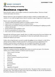 Business Report Form Format Apa Writing Guidelines Example Pdf