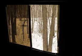 stealthslider trade tinted windows