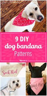 Dog Scarf Pattern New Ideas
