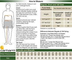 Carhartt Dog Coat Size Chart Bedowntowndaytona Com