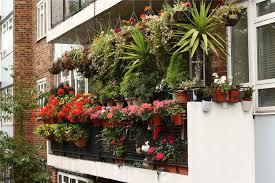 balcony gardens. balcony garden - flowers-plants-planters gardens i