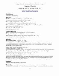 Sample Resume For International Business Graduate Inspirationa Good