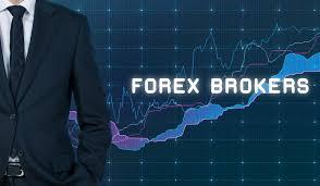 Hasil gambar untuk forex
