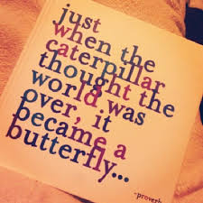 Beautiful Quotes To Live By Best Of We're All Butterflies Life