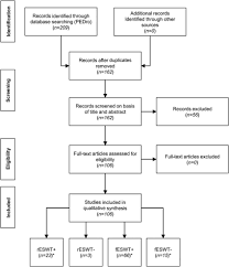 Systematic Review Flow Chart Of The First Literature Search