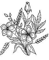 Click on the thumbnail of each spring coloring. Flowers Coloring Pages Sheets Topcoloringpages Net