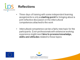 Promoting Intercultural Competences In Collaboration Between
