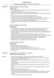 Digital Forensic Analyst Resume Samples Velvet Jobs