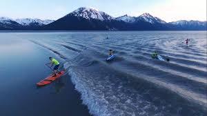 Beluga Point Tide Chart Alaska Bore Tide Viewing Visit Anchorage Alaska