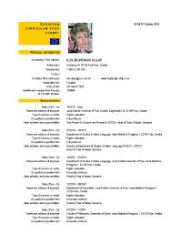 European Resume Template Europe Cv Template Enderrealtyparkco 17
