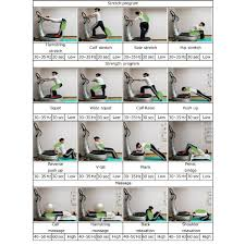 Whole Body Chart The Program Chart For Whole Body Vibration Exercise