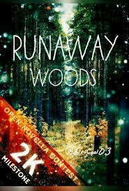 Are Dream Catchers Portals For Demons Awesome Runaway Woods The Quest Wattpad