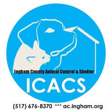 Image of: Sheriffs Department Places Mason Michigan Ingham County Animal Control And Shelter Facebook Ingham County Animal Control And Shelter Home Facebook