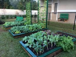 florida vegetable gardening. Raised Bed Gardening 101 Florida Vegetable