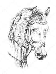 Kleurplaat Paardenhoofd