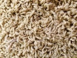 FRIEZE CARPET – Myers Carpet of Atlanta