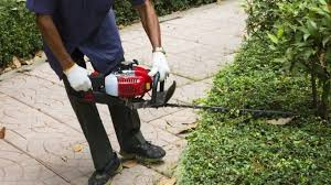 why is my hedge trimmer not working