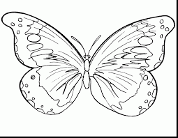 fabulous preschool butterfly coloring pages with butterfly color ...