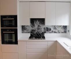 Glass Splashbacks in Kitchens modern-kitchen