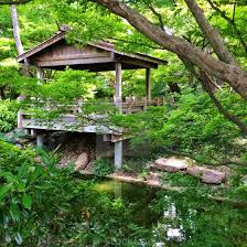 serene scene at the japanese gardens of the botanic gardens of fort worth texas