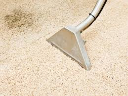 how to get pet stains out of carpet diy