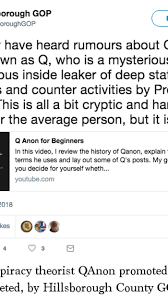 Conspiracy theorist QAnon promoted, then deleted, by Hillsborough County GOP