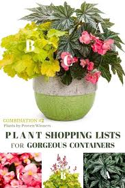 take the guesswork out with these plant lists featuring plants by proven winners planters gardening plantlist empressofdirt