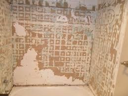 bathtub surround 2 before