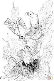 Small Picture American Robins feeding their babies coloring page Free