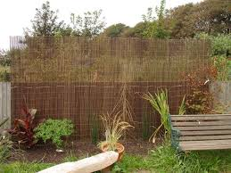 ... garden design ideas for screening ...
