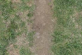 dirt grass texture seamless. Path With Dry Dirt Green Grass Seamless Texture -