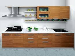 Small Picture Kitchen Design Ideas India Surprising With All Kinds Of Modular